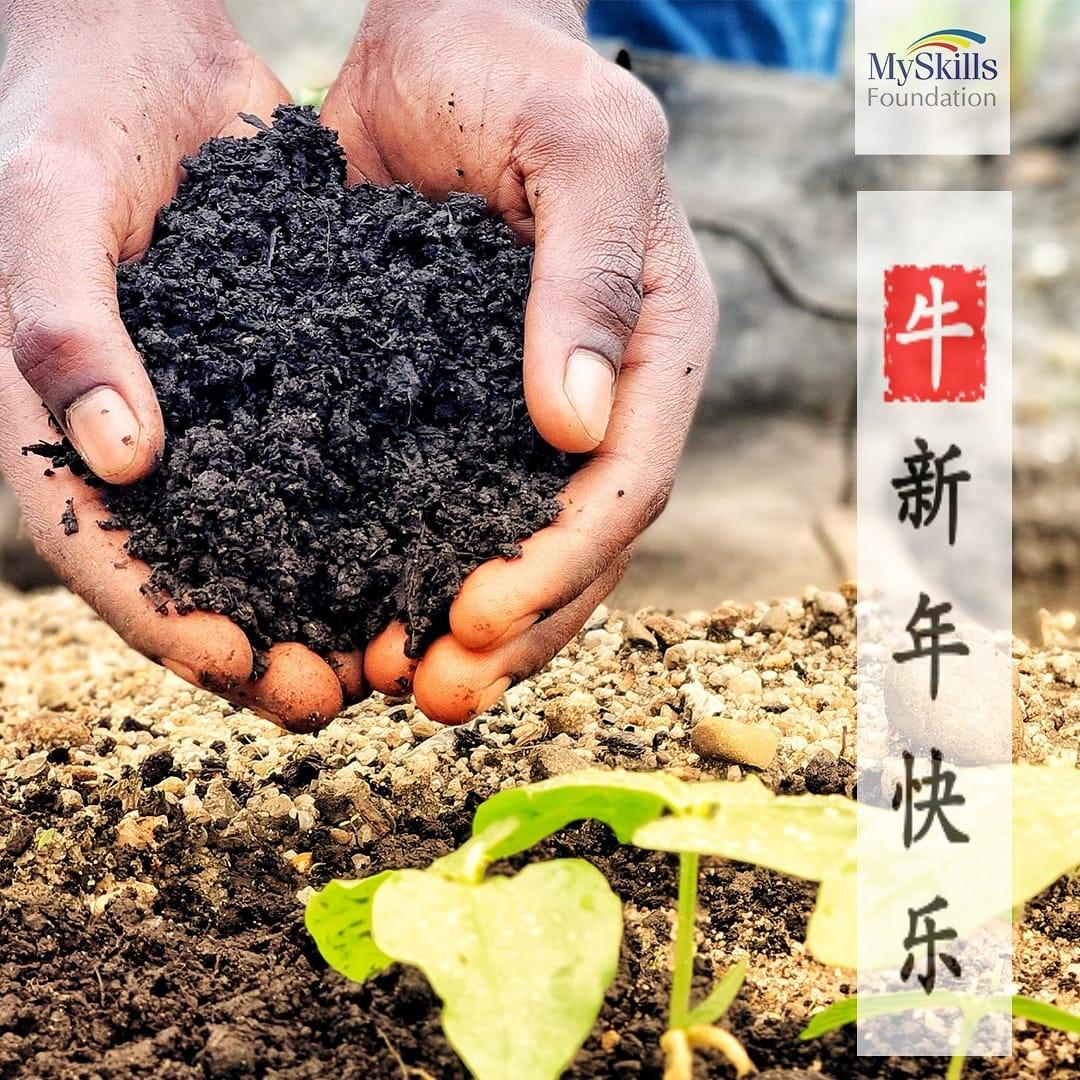 春节快乐 May your conscience grow as strong as on ox. Happy Chinese New Year 2021From Us.